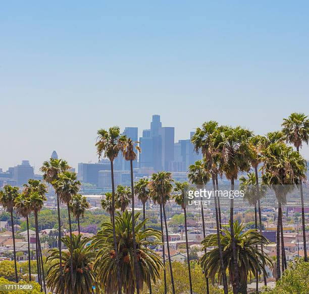 los angeles - beverly hills california stock pictures, royalty-free photos & images