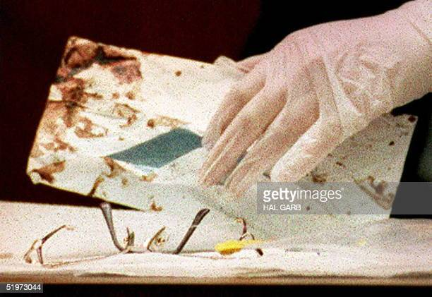 Los Angeles Police criminalist Andrea Mazzola, using gloved hands, removes the eyeglasses of Juditha Brown from a bloody envelope during...