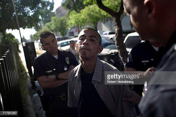 Los Angeles Police Department gang unit officers question a known hispanic gang member in whose back pack a loaded 9mm pistol was found on August 5...