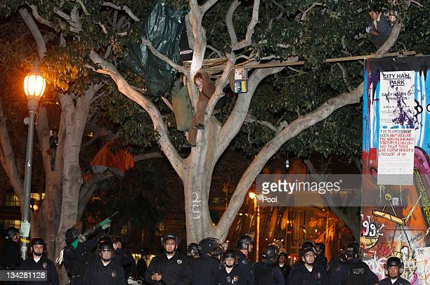 Los Angeles Police officer points his weapon at a protester in a tree during the eviction of the Occupy LA tent encampment outside City Hall in the...