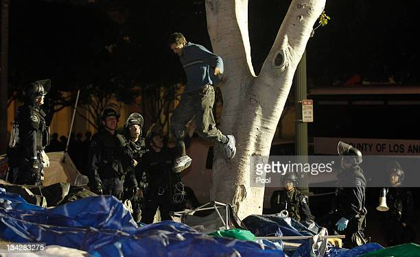 Los Angeles Police officers arrest a demonstrator who camped out in a tree as they dismantle the Occupy LA encampment following a raid by LAPD in the...