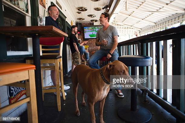 Los Angeles resident Merlin Lucas and enjoys a beer with his dog Diesel at Barney's Beanery sports bar and restaurant in West Hollywood California...