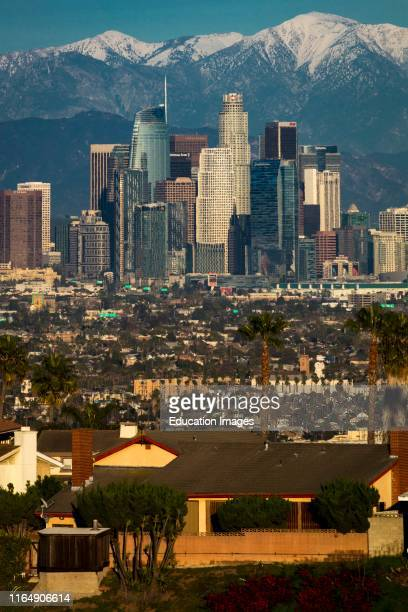 Los Angeles Skyline framed by San Bernadino Mountains and Mount Baldy with fresh snow from Kenneth Hahn State Park.