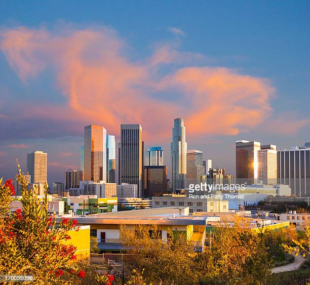 Los Angeles skyline (P)