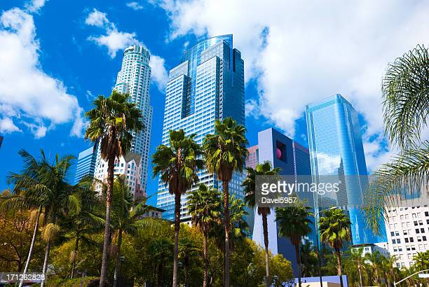 los angeles skyscrapers, clouds, and palm trees - de stad los angeles stockfoto's en -beelden