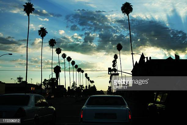 Los Angeles Street at Sunset with palmtrees
