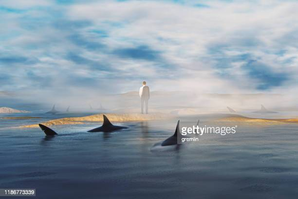 uomo d'affari perduto tra gli squali accerchiato - circondare foto e immagini stock