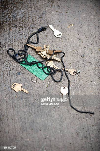 Lost keys lying on wet concrete