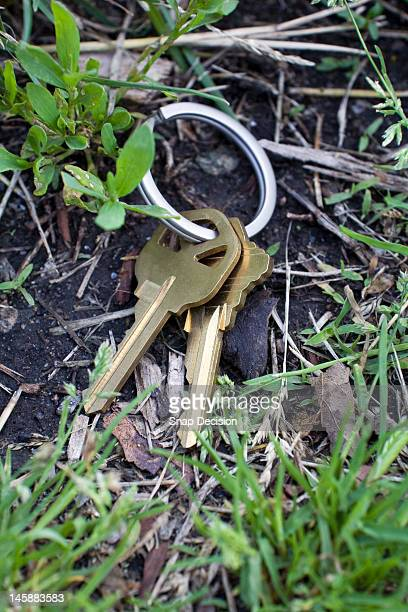 Lost keys on the ground