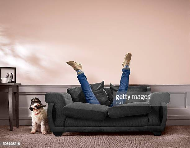 lost remote control - sofa stock pictures, royalty-free photos & images