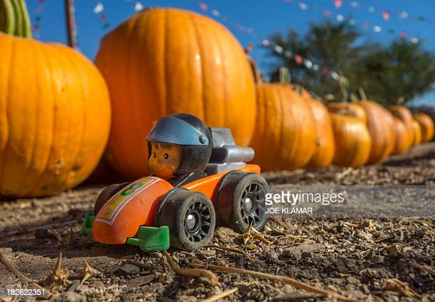 Lost toy rests next to a raw of pumpkins stocked for the upcoming Halloween at the Pierce College Farmer's Market in Woodland Hills, California on...
