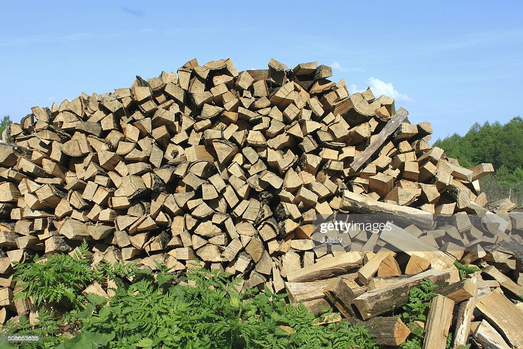 lot of firewood : Stock Photo