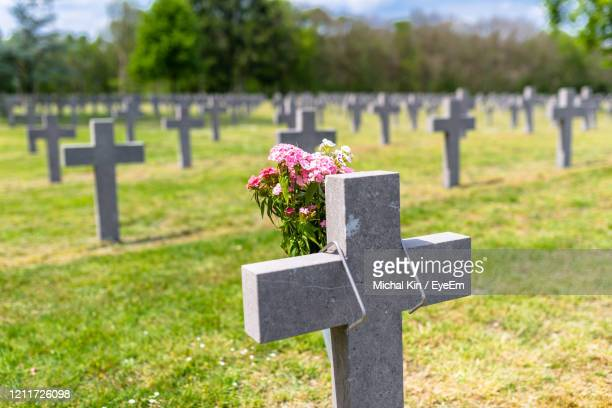 a lot of small, concrete crosses at the german war cemetery in the netherlands. - tombstone stock pictures, royalty-free photos & images