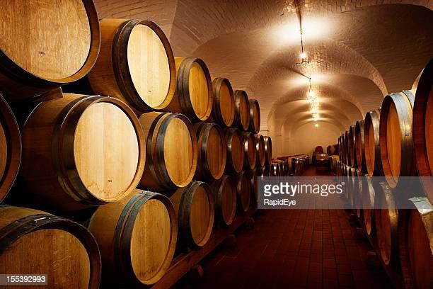 Lots of future wine! Oak barrels maturing in winery cellar