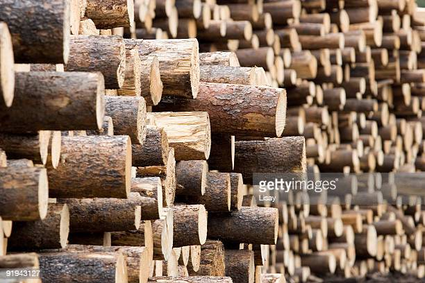 Lots of log ends
