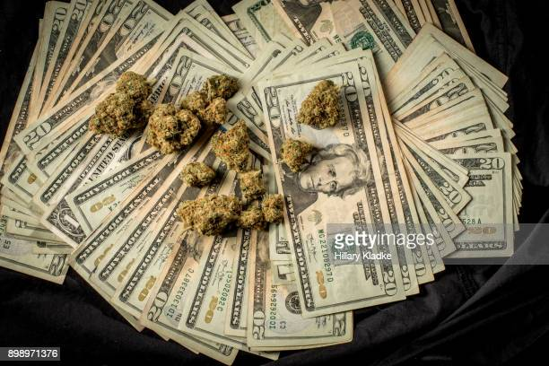 Lots of marijuana on stacks of $20