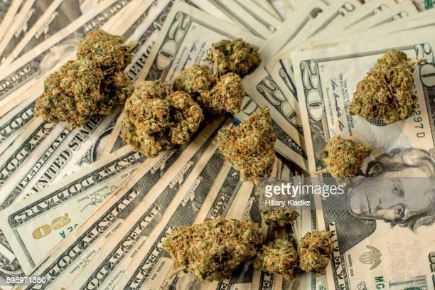lots of marijuana on stacks of $20 - marijuana money stock photos and pictures