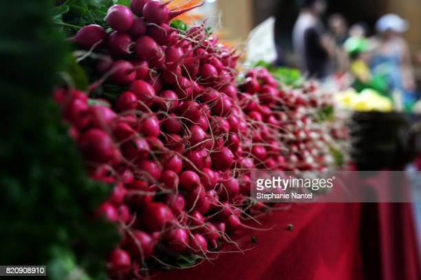 lots of radishes - farm to table stock photos and pictures