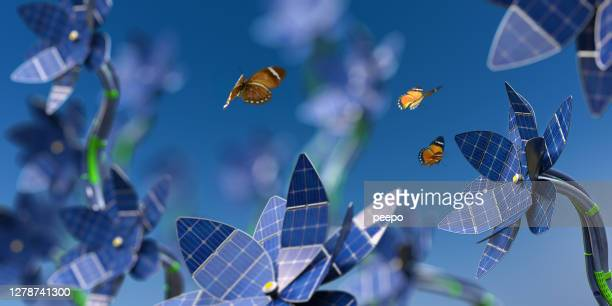 lots of solar panel flowers generating sustainable energy near butterflies - innovation stock pictures, royalty-free photos & images