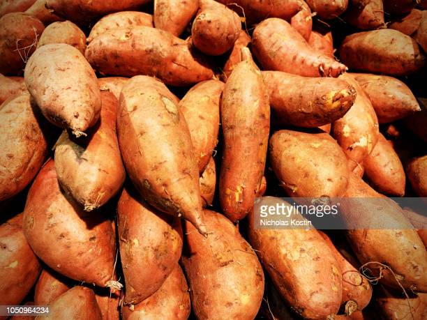 lots of yams - yam stock pictures, royalty-free photos & images