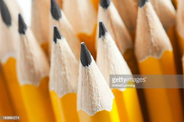 Lots of yellow pencils nib side up with selective focus