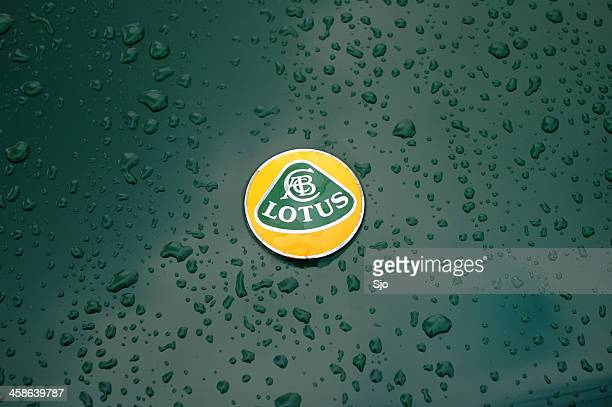 Lotus badge on a green Lotus Esprit classic sports car