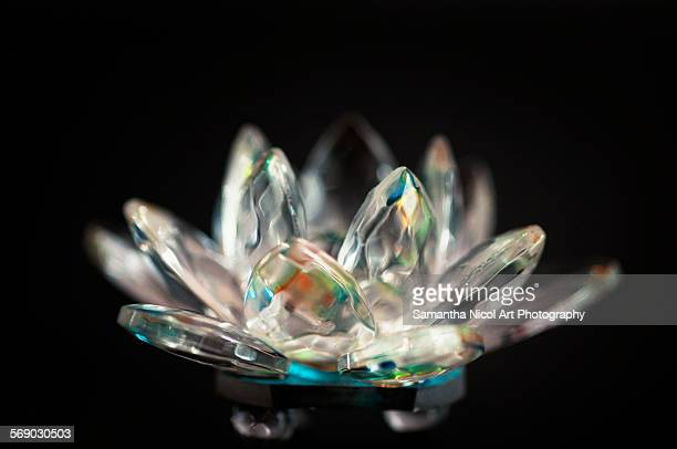 Lotus Crystal