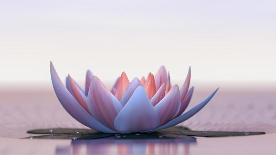 Lotus flower 957876010