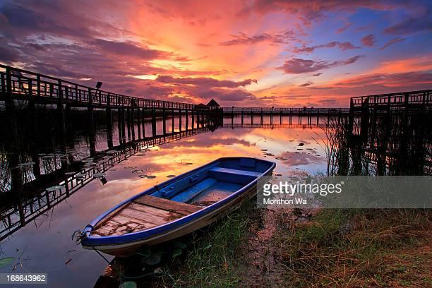 lotus lake, thailand - プラチュアップキリカン県 ストックフォトと画像