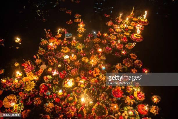 Lotus rafts line the pond to celebrate Loy Krathong on November 22 2018 in Benjakitti Park in Bangkok Thailand Loy Krathong is celebrated on the...