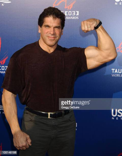 Lou Ferrigno during The 3rd Annual World Stunt Awards - Arrivals at Paramount Studios in Los Angeles, California, United States.