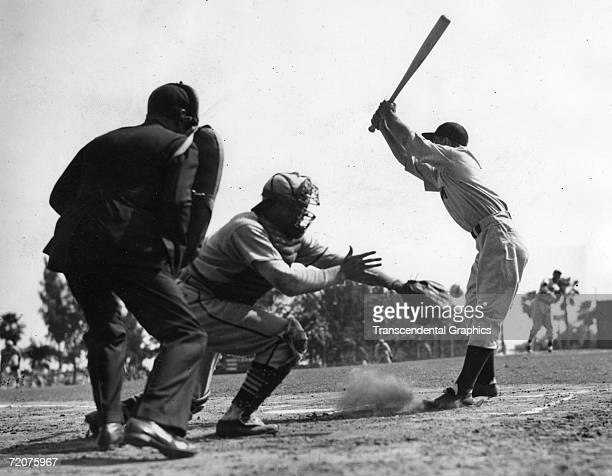 ST PETERSBURG FLORIDA MARCH 13 1939 Lou Gehrig New York Yankee first baseman pulls back from an inside pitch during a spring training game against...