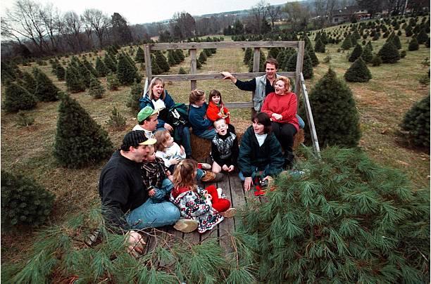11/29/97 - PHOTOGRAPHER:TRACY A. WOODWARD - Loudoun County Christmas - 11/29/97 - PHOTOGRAPHER:TRACY A. WOODWARD - Loudoun County Christmas