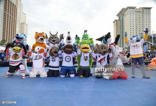 Louie of the St Louis Blues Nordy of the Minnesota wild Hunter the Lynx of the Edmonton Oilers SJ Sharkie of the San Jose Sharks Victor E Green of...