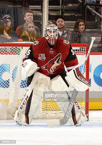 Louis Domingue of the Arizona Coyotes gets ready to make a save against the Anaheim Ducks at Gila River Arena on January 14 2017 in Glendale Arizona