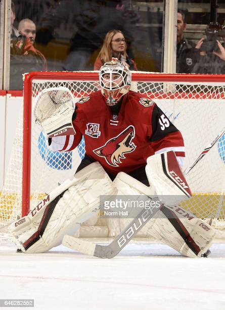 Louis Domingue of the Arizona Coyotes gets ready to make a save against the Buffalo Sabres at Gila River Arena on February 26 2017 in Glendale Arizona
