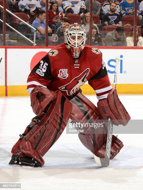 Louis Domingue of the Arizona Coyotes gets ready to make a save against the St Louis Blues at Gila River Arena on March 29 2017 in Glendale Arizona