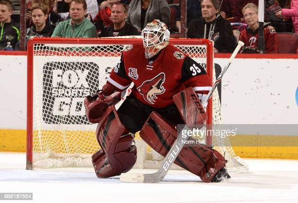 Louis Domingue of the Arizona Coyotes gets ready to make a save against the Vancouver Canucks at Gila River Arena on April 6 2017 in Glendale Arizona