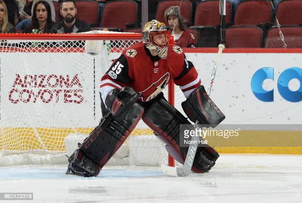 Louis Domingue of the Arizona Coyotes gets ready to make a save against the Boston Bruins at Gila River Arena on October 14 2017 in Glendale Arizona
