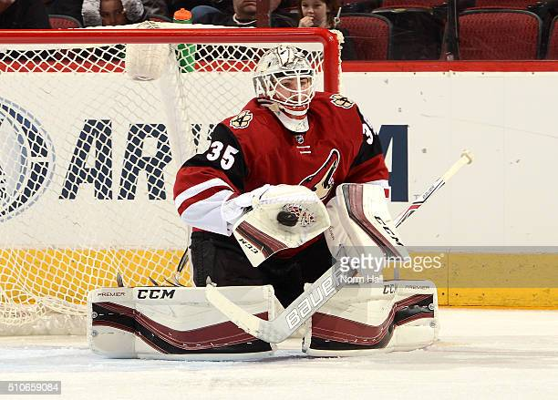 Louis Domingue of the Arizona Coyotes makes a glove save against the Calgary Flames at Gila River Arena on February 12 2016 in Glendale Arizona