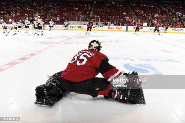 Louis Domingue of the Arizona Coyotes prepares for a game against the Boston Bruins at Gila River Arena on October 14 2017 in Glendale Arizona