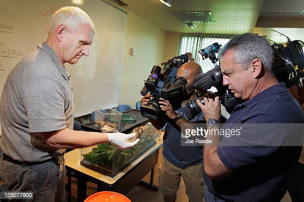 Louis Lodyga Environmental Supervisor Division of Plant Industry with the Florida Department of Agriculture and Consumer Services shows the media a...