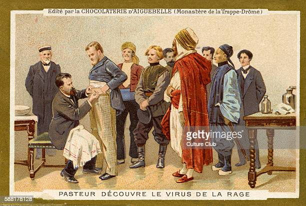 Louis Pasteur discovers the rabies virus Pasteurs development of rabies vaccine laid the foundations for the manufacture of many other vaccines the...