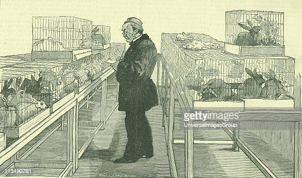 Louis Pasteur French chemist in his laboratory at the Ecole Normale Paris during his work on hydrophobia Around him are cages full of the rabbits he...