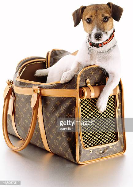 louis vuitton pet carrier with dog - louis vuitton purse stock pictures, royalty-free photos & images
