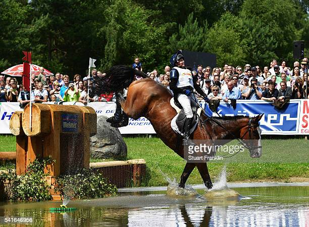 Louise Harwood of Great Britian riding Mr Potts jumps during the cross country section of the Messmer Trophy Luhmuhlen on June 18 2016 in Luhmuhlen...