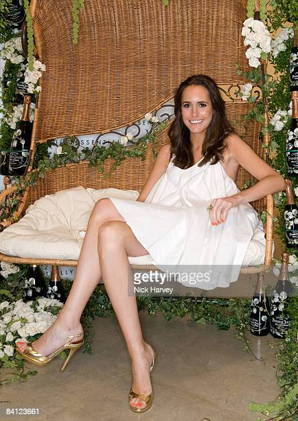Louise Roe attends The Quintessentially Summer Arts Party at Phillips de Pury & Company on July 9, 2008 in London, England.