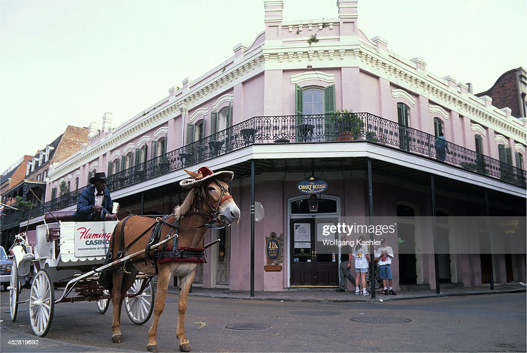 Usa louisiana new orleans french quarter chart house horse