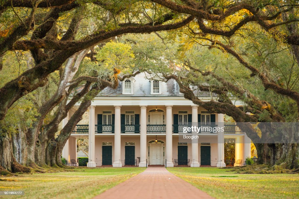 Louisiana Southern Oak Alley Plantation Architecture with Tree Canopy : Stock Photo
