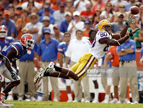 Louisiana State receiver Dwayne Bowe catches a pass against Florida Gators cornerback Reggie Lewis at Ben Hill Griffin Stadium on October 7 2006 in...
